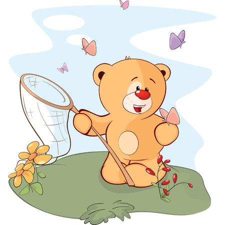 butterfly net: A stuffed toy bear cub and a butterflies cartoon Illustration