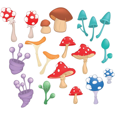 Set of Cartoon Illustration.A Different Mushrooms for a Computer Game and you Design