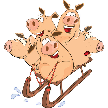 Funny piglets on sled