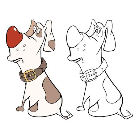 Orange Hunting Dog Harness