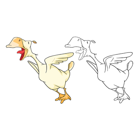 Illustration of Domestic Geese Cartoon Character Coloring Book Çizim