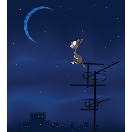 The Feral Cat and the Moon Vector Cartoon Illustration