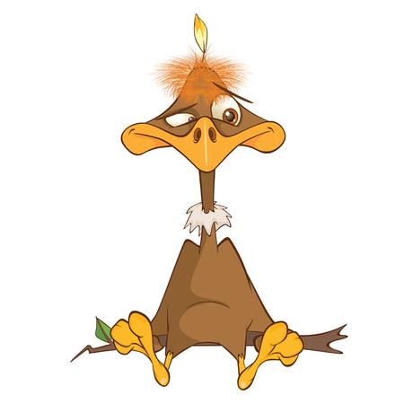 Illustration of a Cute American Condor Cartoon Character Illustration