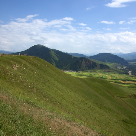 Beautiful grassland scenery photo