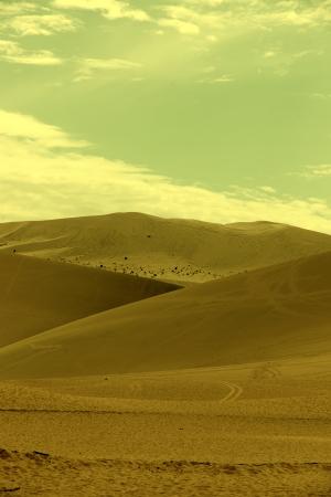 Desert in China photo