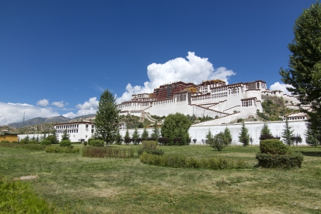 China Tibet grassland and the Potala Palace.
