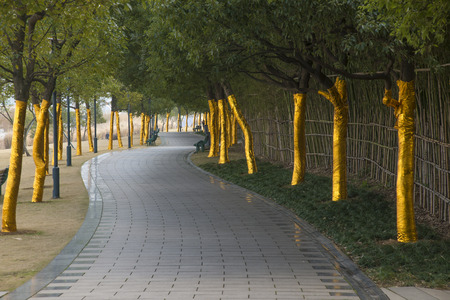 Parks and corridors of trees Stock Photo - 28412496