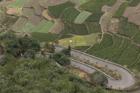 Farmland and winding road photo