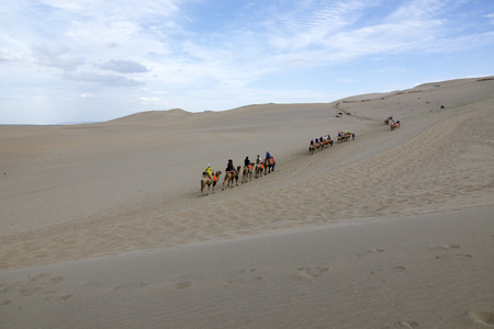 Desert camel walking in the Chinese Dunhuang. photo
