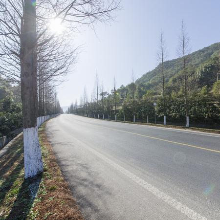 rural highway road 写真素材