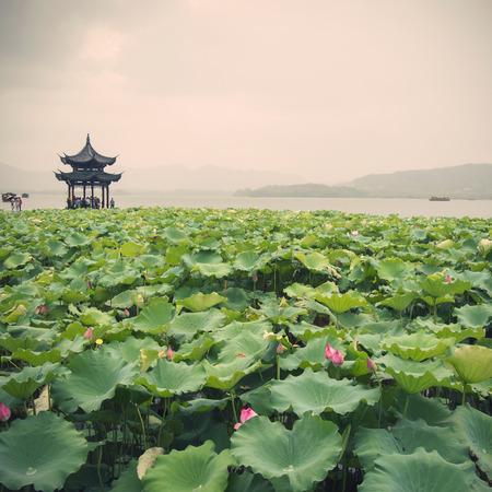 Chinese  pavilion Foto de archivo - 109551243