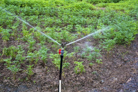Agriculture automatic watering system