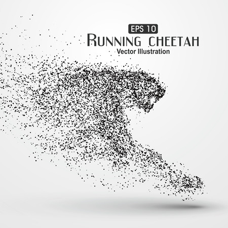 Particle cheetah, illustration. Vettoriali