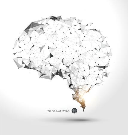 두뇌 그래픽 시점의 전선