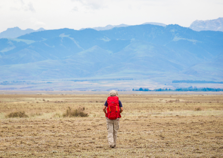 gobi: The explorers walking in Gobi. Stock Photo