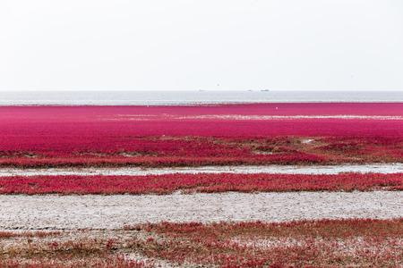 Playa roja.