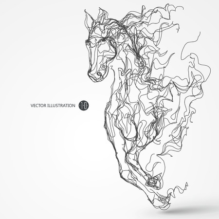 subduction: Running horse, lines drawing, illustration.