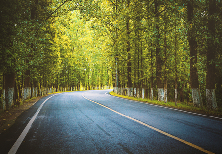 On both sides are tree lined country roads. Stock Photo