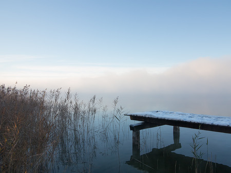 Frost covered pier with reeds in mist