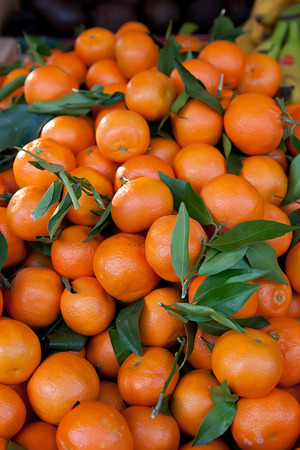 Mandarin oranges for sale at a Paris market