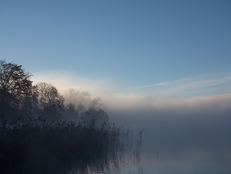 Low mist over lake with reeds Stok Fotoğraf