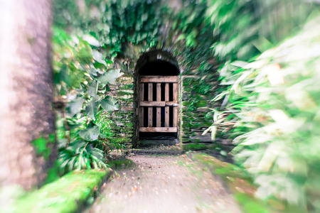 Dark doorway entrance surrounded by plant growth