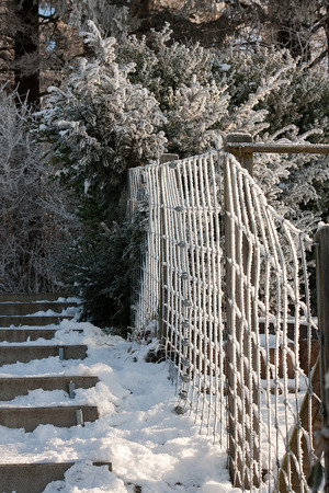 Frost covered fence and steps heading uphill into forest Stok Fotoğraf