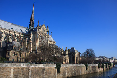 Notre Dame cathedral viewed from along the Seine River with blue skies Stok Fotoğraf