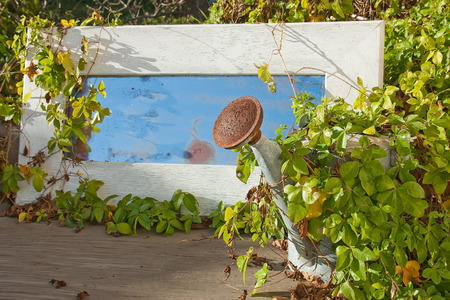 entropy: Vine covered rusted watering can sits in front of white framed mirror reflecting the blue sky