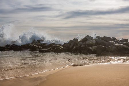 California coast waves with rocks and shorebird