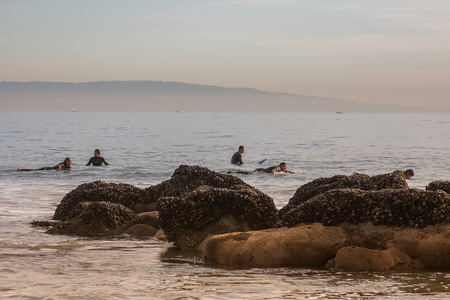 Surfers preparing to surf the waves
