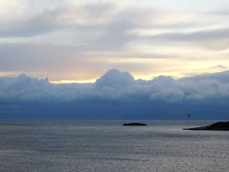 Shades of blue. View of the sea, at sunset, storm clouds, and a seagull Banco de Imagens