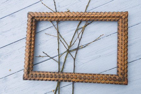 contorted: A branch of the tree in a wooden frame on a white background Stock Photo