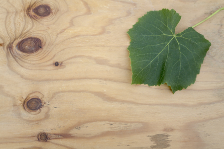 one sheet: One sheet of grapes on a wooden surface