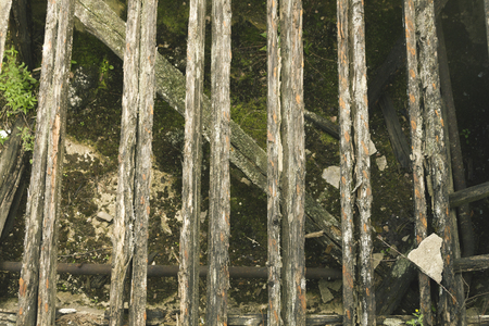 wooden beams: old wooden beams, logs and moss background