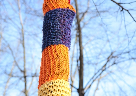 enveloping: Colored knit enveloping a tree