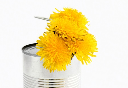 Yellow flowers in can