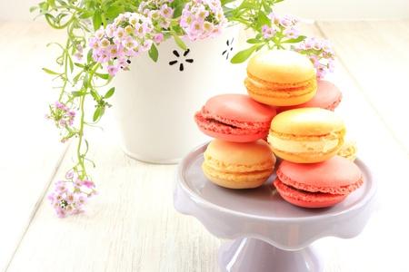 Macarons délicieux Banque d'images - 20213594