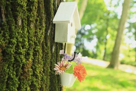 maison oiseau: White bird maison fleurs