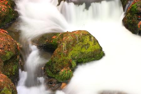 rapids: Stone in the rapids Stock Photo