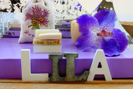 lila: Lila   orchid Stock Photo