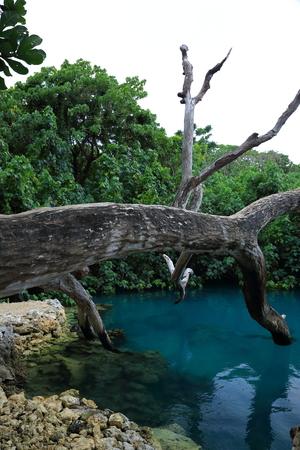 vanuatu: Blue-Hole-Efate Vanuatu