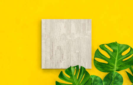 Natural Empty cube box on summer vivid color background with tropical palm leaves. for cosmetic product display. Flat lay. Top view. 3d render.