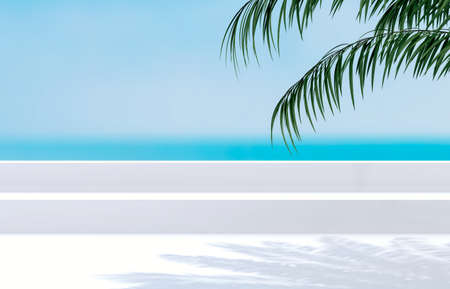 Natural summer beach backdrop with palm tree shadow for product display. Abstract 3d summer scene. sea view.