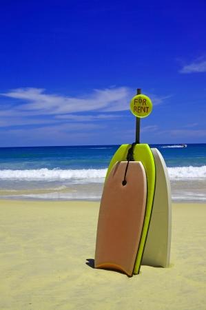 青い空を背景に美しい砂のビーチには家賃もナイスです。