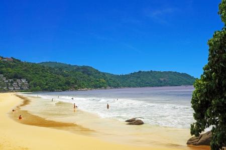 Kata Noi Beach Shoreline