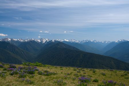 fantastic view: Fantastic view of Olympic Mountains