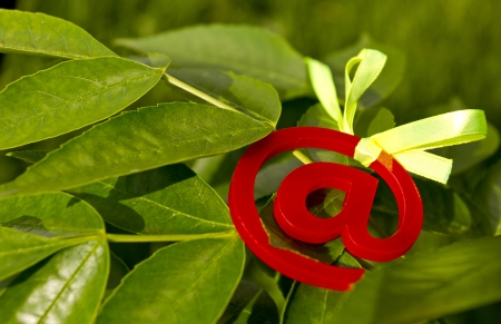 worldwideweb: Festive bow with a plexiglas at-symbol on a green leafs background. Stock Photo