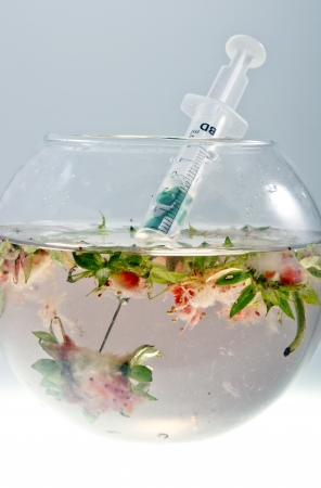 Genetic food engineering concept with strawberries parts inside of a glass bowl and syringe with capsules. photo