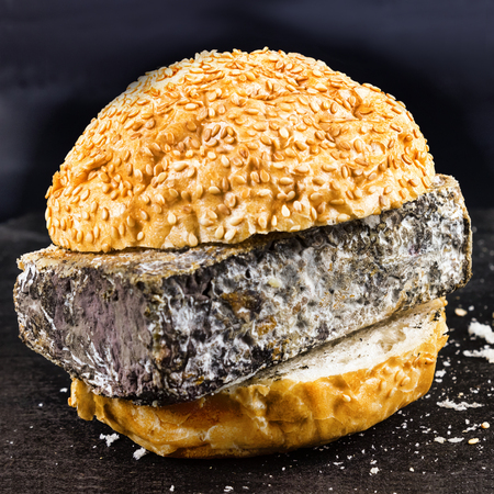 Expired Fast food. Bun for Burger and spoiled cheese. Harmful da Stock Photo